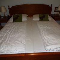 ベッドの硬さもよかったです。