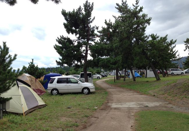 琵琶湖の間際に車を止めれます。