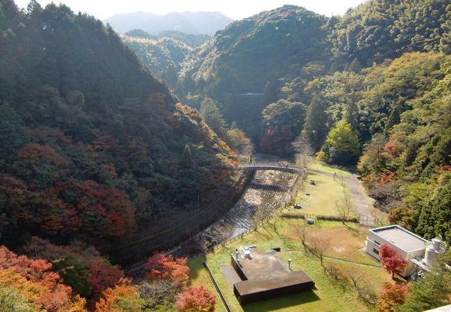 曲渕ダムパーク クチコミ・アクセス・営業時間|博多【フォートラベル】