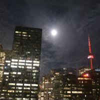ビル街の灯りが見事!CNタワーも満月も。