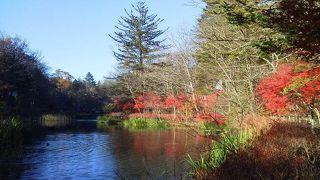 軽井沢の紅葉の名所です