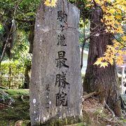 百日紅(さるすべり)の木の股に種が落ちて成長した「縁結びの松」