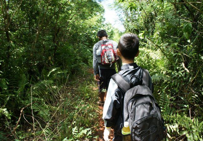 グアムの大自然と洞窟を満喫