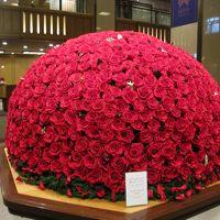 ロビーに設置された、1,000本の真赤バラ!!