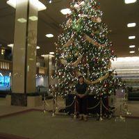 ロビーのクリスマスツリーで〜す!!