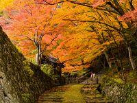 百済寺(滋賀県東近江市)