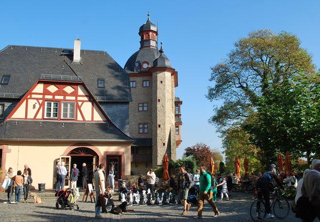 ワイン畑に囲まれた古いお城