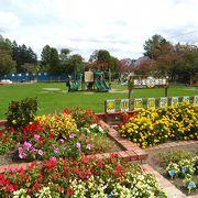 入園無料のミニ動物園&公園で親も子供もうれしい公園