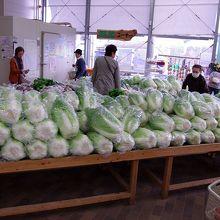 山のように積まれた白菜です。