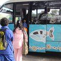 写真:ロットネスト島1時間30分バスツアー