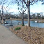高速からも一般道からも入れます 水のテーマパーク
