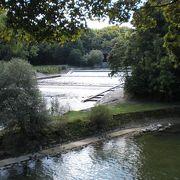 意外ときれいな川