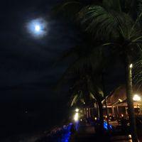 海岸沿いで、星を見ながらカクテルをどうぞ