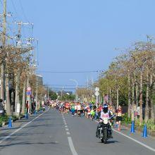 最高の季節、だが、走るには暑い(>_<)