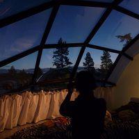 室内からの景色
