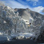 見事な雪景色