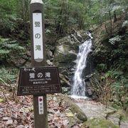 春日原始林の中にある滝