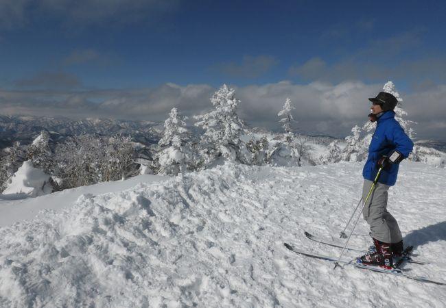場 たかつえ スキー
