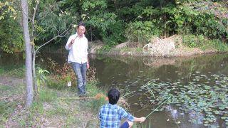 岩倉市自然生態園