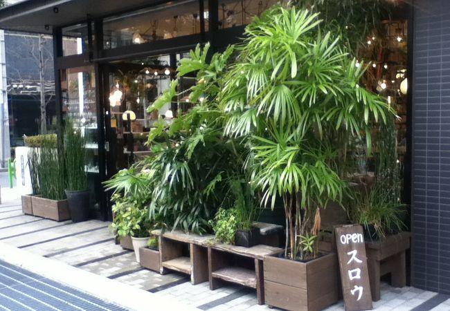 店頭の観葉植物が印象的な生活用具のお店