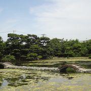 巨大な大名庭園でタイムトラベル