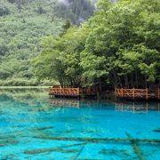 澄み切った青い水の底に、樹木が浮かび上がって見える幻想的な場所。