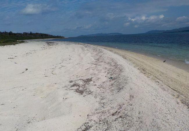 響きあうサンゴの砂