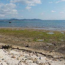 ナーラサ浜から、石垣市街地方向。