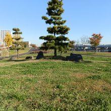 新しい公園です。