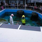 姫路市立の水族館