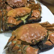 来期も上海蟹はここで~