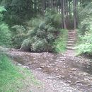 梅ヶ瀬渓谷