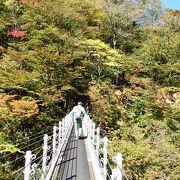 橋上から見える地獄谷の紅葉