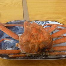 いつか魚卵丼が食べたい