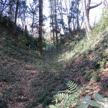 松山城、曲輪4と曲輪3の間の空堀。往時は木々がなかった。