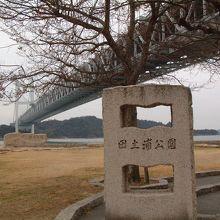 田土浦公園で撮影