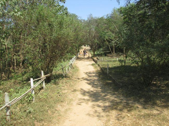 ワンポーエレファントキャンプ