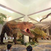 恐竜、動物、天体、科学の展示を見るならココ