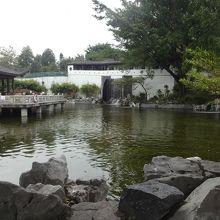 池もあります。