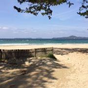 綺麗なビーチです