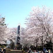 花見もできる、無料の動物公園