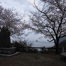 春は桜がきれい