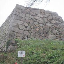 山中御殿跡の里側にある高い石垣。