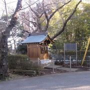 大山街道は、江戸時代「矢倉沢往還」いわれていました