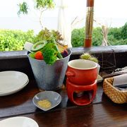島野菜のバーニャカウダがおいしい海カフェ