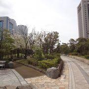 海浜幕張駅周辺の遊歩道