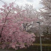 古川総合公園