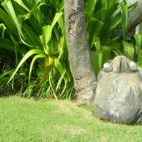 あちこちに蛙君が・・・ライトカバーです。おしゃれです。