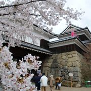 桜と上田城の櫓と堀 見事なコントラストです。 夜桜もGOOD!