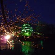 さすが、日本三大夜桜の一つですね♪(^^)